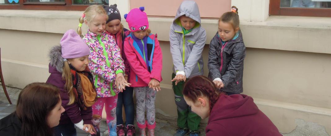 Školní soutěž v první pomoci